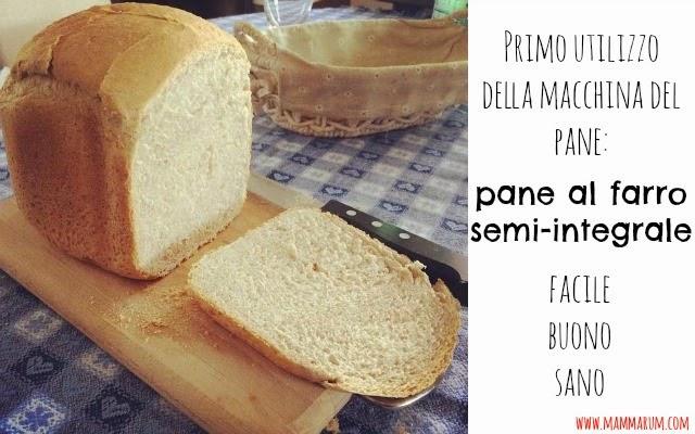 Primo utilizzo della macchina del pane: pane facile al farro semi-integrale