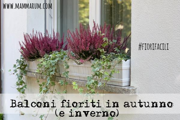 Mettiamo fiori sui nostri balconi