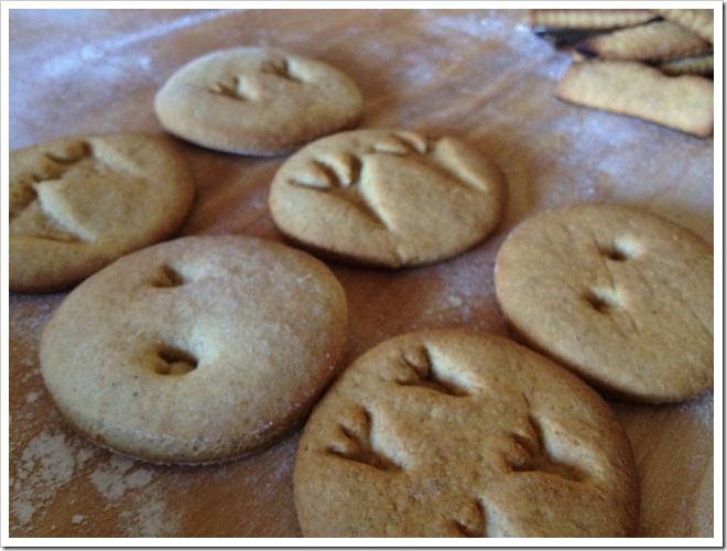 biscotti orma dinosauro