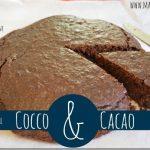 Torta cocco e cacao senza burro e uova
