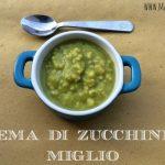 Crema di zucchine e miglio