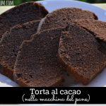 Torta al cacao nella macchina del pane