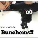 Cosa sono i Bunchems?